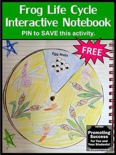 You will download a free printable frog life cycle craft activity (craftivity) for a science classroom centers or stations project. Students will color the pictures, cut and paste and assemble the frog life cycle diagram and spinner wheel, which may be attached to an interactive notebook or poster. This sequencing lesson is appropriate for 2nd, 3rd or 4th grade, special education and kids with autism.