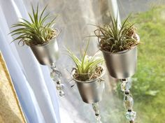 k-cup project air plant planters