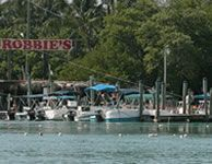 Favorite stop in the Keys--pay a couple of bucks for a bucket of shiners and feed the 5ft Tarpon that hang around the dock!  Fun for kids and big kids!