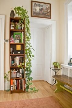 love the tall bookcase, the trailing philodendron, and the recycled glass bottle on the floor, oh and that killer bench and side table