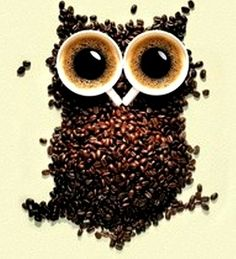 ☕ Coffee bean art owl ☕                                                                                                                                                                                 More
