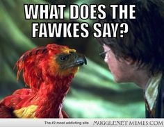 What does the Fawkes say?