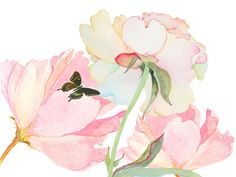 abstract flower watercolor - Google Search