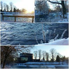 """""""Bilder från vintern dec 2014. #Boulognerskogen #gävle #vinter #naturelovers #nature_sultans #nature_shooters #naturegram #enjoysweden #visitgavle…"""""""