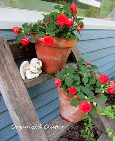 What could be better than a garden tour? How about 12 garden tours? Join me and my gardening friends for garden inspiration! Garden Ladder, Garden Junk, Garden Art, House Ladder, Garden Ideas, Garden Crafts, Container Gardening, Gardening Tips, Clutter Organization