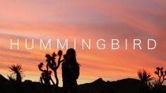 Equanimous - Hummingbird ft. Cyndy Fike