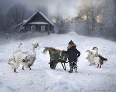 """Напоследок о зиме -   """"Ветер, ветер на всём белом свете..."""" По крайней мере в Тамбове. И мухи белые-снежинки в воздухе кружат. А вспомним, что весна. Вспомним каково было зимой. Отрадная картинка зимы в работах Елены Шумиловой. Ждём таких же замечательных весенних фо�"""