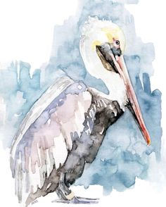 "Pelican Painting - Print from Original Watercolor Painting, ""The Fish Catcher"", Beach Decor, Water Bird, Pelican Art by TheColorfulCatStudio on Etsy https://www.etsy.com/listing/197153612/pelican-painting-print-from-original"