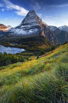 Naturally Amazing, Glacier National Park. Montana