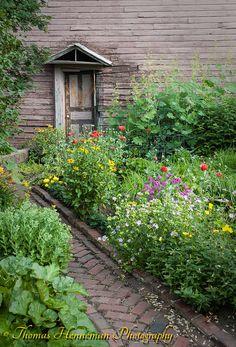 Backyard garden, Eau Claire