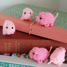 Minature piglets running around and exploring, ready to come and explore with you!