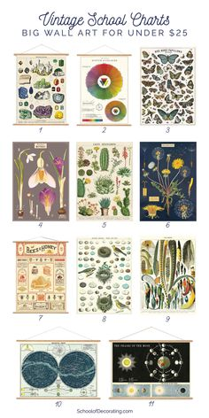 Vintage-Style School Charts for Under $25 - School of Decorating