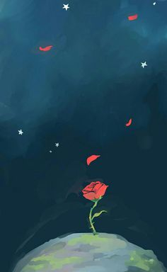 """""""It was the time you spent with your rose, which made her so important,"""" 🌹✨ Bear Wallpaper, Wallpaper Iphone Cute, Disney Wallpaper, Flower Wallpaper, Screen Wallpaper, Ios Wallpapers, Cute Cartoon Wallpapers, Flower Backgrounds, Wallpaper Backgrounds"""