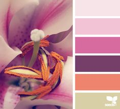 today's inspiration image for { macro hues } is by . thank you, Jessica, for another stunning image share! Colour Pallette, Colour Schemes, Color Combinations, Color Harmony, Color Balance, Design Seeds, Pantone, Colour Board, Color Swatches