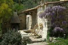 Charme au jardin