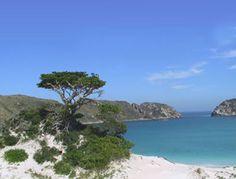 Arraial do Cabo - RJ - Brazil