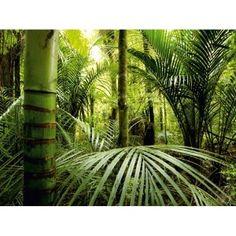 Fotomural de la frondosa selva