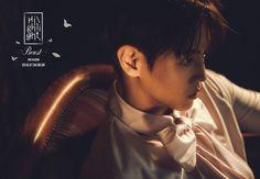 2016.07.04 #BEAST 3RD ALBUM [#HIGHLIGHT]  Title song_ #리본(#Ribbon) Jacket Image -요섭-