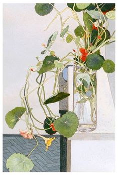 Australian artist Cressida Campbell (b. Sydney, Australia) is celebrated for her meticulous technique that combines both painting and printing. Botanical Drawings, Botanical Prints, Watercolor Flowers, Watercolor Art, Fleurs Art Nouveau, Illustrations, Illustration Art, Guache, Arte Floral