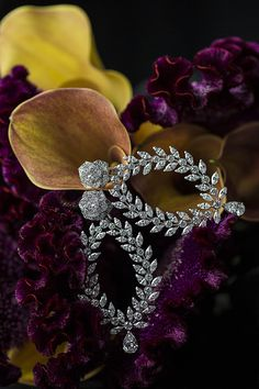 Diamond Jewelry, Diamond Earrings, Custom Website Design, Advertising Photography, Jewelry Photography, Creative Photos, High Jewelry, Photo Jewelry, Jewelery