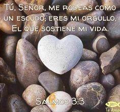 Salmos 3:3 facebook.com/jesusteamamgaministries