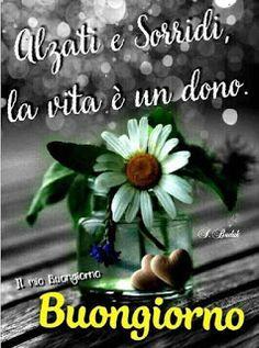 Buongiorno dolce e tenero Italian Memes, Good Thoughts, Inspiration, Video, Happy Birthday, I Love You, Italian Quotes, Fotografia, Good Morning