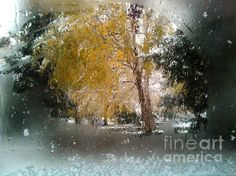 Autumn and Winter by Dan Marinescu All Things, Dan, Autumn, Wall Art, Winter, Nature, Painting, Winter Time, Naturaleza