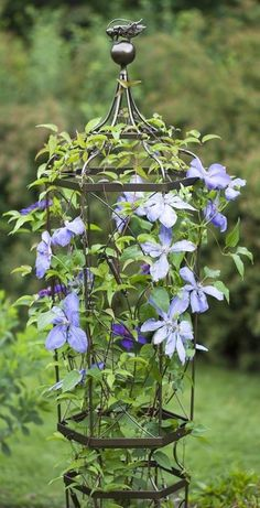 flower displayer