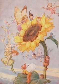 'Sunflower Fairies' by Margaret Tarrant