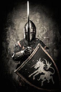 medieval knight - Hledat Googlem