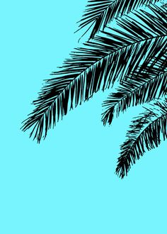 Turquoise #Print (Aqua Print) for Instant Download. Lovely Turquoise #Printable, based on a Photograph of a Palm Tree, to Update or Decorate your Living Room, Office or Bedro... #print #printable #instantdownload #blue #digitalart #wallart #printableart #décor #decorideas #art ➡️ http://jto.li/uBKv2