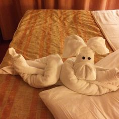 towel animals | Tumblr