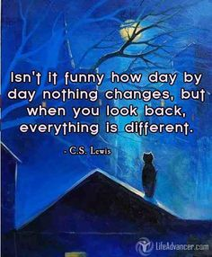 Isn't it funny how day by day nothing changes, but when you look back, everything is different...  ~ C.S. Lewis - Join us at @ladvancer
