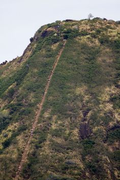Koko Crater Hike, Oahu Just hiked this. What a workout!