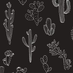 KESS InHouse Maria Bazarova 'Insects' Black Animals Dog Place Mat, x * Amazing product just a click away : Dog food container Kaktus Illustration, Cactus Pattern, Black Paper Drawing, Tattoo Schwarz, Dog Food Container, Cactus Drawing, Simple Aesthetic, Aesthetic Drawing, Black Animals