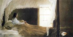 Chambered Nautilus - Andrew Wyeth