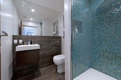 SW11 ensuite shower room with mosaic tiles