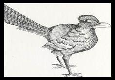 Bird - Pen Drawing