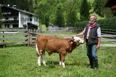 Producing Food In Harmony With Nature - To get a mouth-watering taste of the Olympiaregion Seefeld, we highly recommend a visit to Gut Leutasch. Winter Holidays, Alps, Nature, Food, Naturaleza, Essen, Meals, Nature Illustration, Off Grid