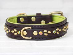 15 izzy leather dog collar 2