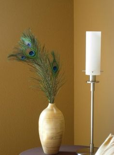Put peacock feathers in a vase to brighten up a room.  *Bring a little romance into the home in subtle ways. Give subtle reminders of sexy memories (without letting everyone know)  Most people will just see some decorative feathers in a vase/bottle, but you/your lover will be reminded of having them traced across their body.