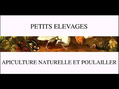 petits élévages - apiculture naturelle et poulailler - YouTube Permaculture, Hui, Language, Gardening, Beekeeping, Bees, Hens, Beehive, Cooking Food