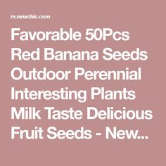 Favorable 50Pcs Red Banana Seeds Outdoor Perennial Interesting Plants Milk Taste Delicious Fruit Seeds - NewChic Mobile