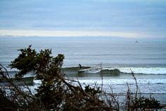 Jill Manos surfing Nova Scotia, Canada. Surf photo by Scotty Sherin.