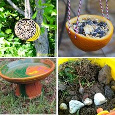 How to encourage outdoor learning with living things. Outdoor Learning Spaces, Bug Hotel, Mason Bees, How To Attract Birds, Nesting Boxes, Planting Seeds, Easy Projects, Compost