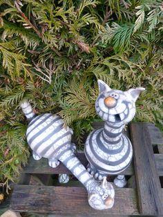 Longneck cat