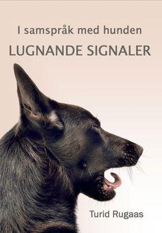 I samspråk med hunden -Lugnande Signaler
