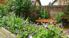 Bij de Ginkgo staan kwaliteit, vakmanschap en persoonlijk contact voorop. Wij réaliseren alle soorten (bedrijfs-) tuinen en bieden uitstekende service en garanties.