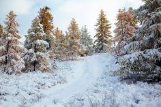 C'est en Sibérie que l'homme vit dans les conditions climatiques les plus froides. Cette région de Russie, toute proche de la Mongolie, affiche des températures minimales moyennes de - 47 °C en janvier.  ©  Serg Zastavkin - Fotolia.com