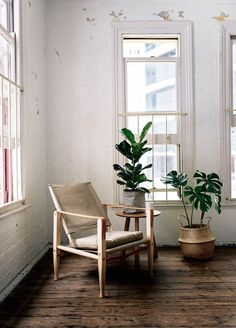 rustic wood floors, white brick wall and mid century chairs and split leaf plants in weave baskets